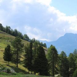 Gouter a l alpage 2