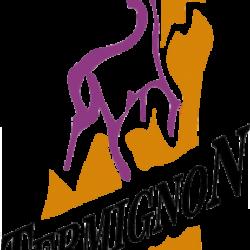 Logo termignon